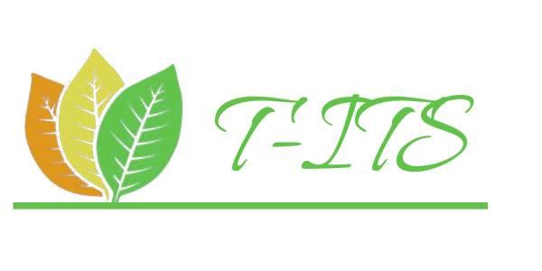 T-ITS - Cigarette filters, paper, foil, glicol